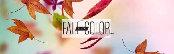 Nbopi fall banner